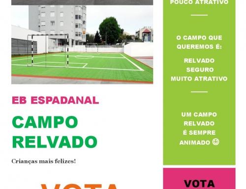Vencedor do Orçamento Participativo Municipal 2018 (a nível de escola): Campo Relvado