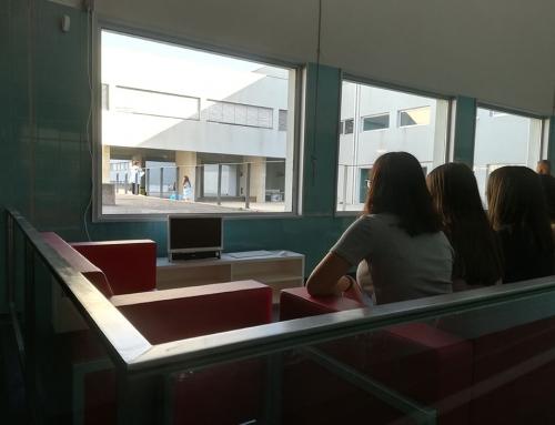Inauguração do projeto vencedor OPE (Orçamento participativo de Escolas), ano letivo 2017 /18
